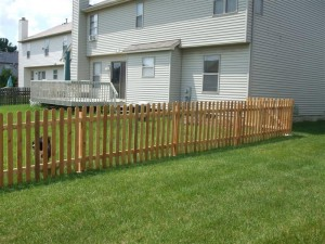 Fence Completed 2